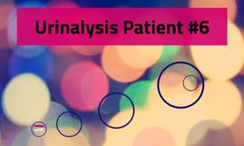 Urinalysis Patient #6