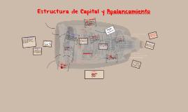 Copy of Estructura de Capital y Apalancamiento
