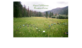 Copy of August Wilderness