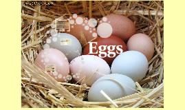 Eggs PREZI