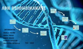 ADN RECOMBINANATE