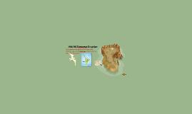 1886 Mt Tarawera Eruption