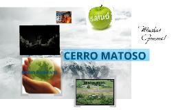 Copy of CERRO MATOSO