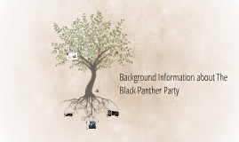 Background Information about The Black Panther Party
