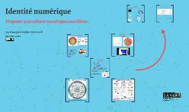 Culture numérique et réseaux sociaux