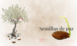 Copy of Semillas de paz