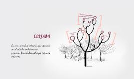 Copy of Aparición y desarrollo del celoma (celo,hueco,cavidad)