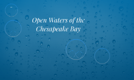 Open Waters of the Chesapeake Bay