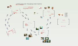 Copy of ATENCION DE TRABAJO DE PARTO