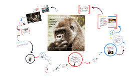 Rethinking human-species relationships: Emerging theory for a sustainable world?