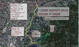I Tesori Nascosti della Collina di Torino