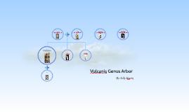 Vulcan's Family Tree