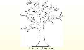 Evolution of a Theory