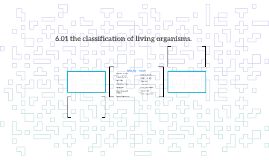 6.01 the classification of living organisms.