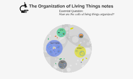 The Organization of Living Things notes