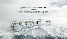 galeria tae de fotografia