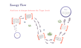 Copy of Energy Flow Change Between Trophic Levels.