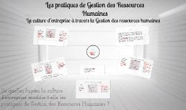 Copy of Les pratiques de Gestion des Ressources Humaines