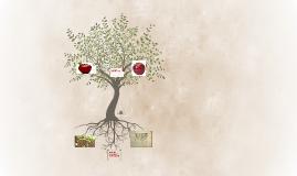 koren koji pricvrstuje celo stablo za zemlju