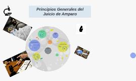 Copy of Principios Fundamentales del Juicio de Amparo