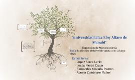 """universidad laica Eloy Alfaro de Manabi"""