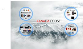 Copy of CANADA GOOSE