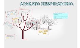 Copy of APARATO RESPIRATORIO.