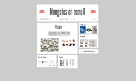 Mongetes en remull