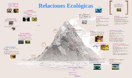 las relaciones ecologicas