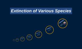 Extinction of Various Species