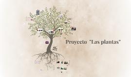 """Proyecto  """"Las plantas"""""""