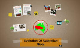 evolution of australian biota assessment answers Evolution of australian biota a) baragwanathia baragwanthia fossils were first discovered in yea, victoria in 1875 and were first described as a lycopod which was derived from the zosterophylls by australia's eminent pioneer botanist, dr isobel cookson in 1935.