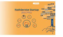 NethService Startup
