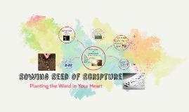 Sowing Seed of Scripture
