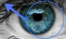 Terapia genica en ceguera