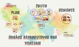 Órgãos reprodutivos
