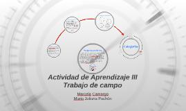 Actividad de Aprendizaje II