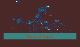 Copy of Natural Cacao