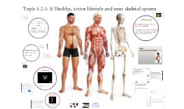 1.2.5:  32 A Healthy, active lifestyle and your skeletal s