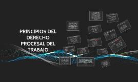 Copy of PRINCIPIOS DEL DERECHO PROCESAL DEL TRABAJO