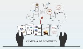 CAMARAS DE COMERCIO