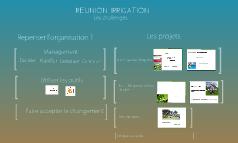 REUNION IRRIGATION