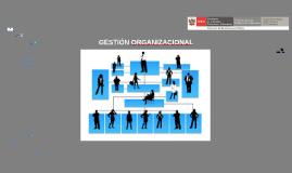 Copy of DISEÑO ORGANIZACIONAL ULTIMO