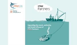 Citrix Partners 2