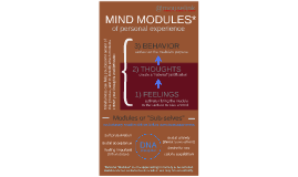 MIND MODULES of Personal Experience