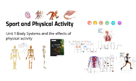 Sport and Physical Activty