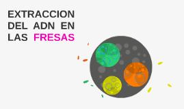 EXTRACCION DEL ADN EN LAS FRESAS