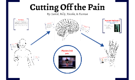 Copy of Cutting Off the Pain