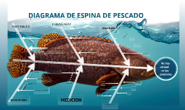 Copy of Copy of DIAGRAMA DE ESPINA DE PESCADO