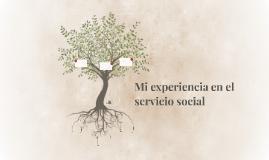 Mi experiencia en el servicio social